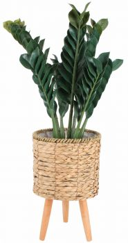 Malo S3 Pot Plant Stands With Legs Kd 30 X 58cm Lge White